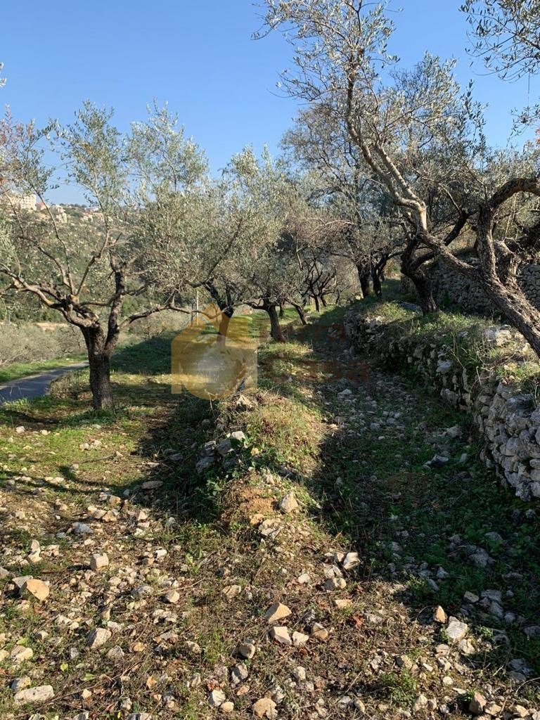 Land for sale in Ghalboun located in calm area  mountain view