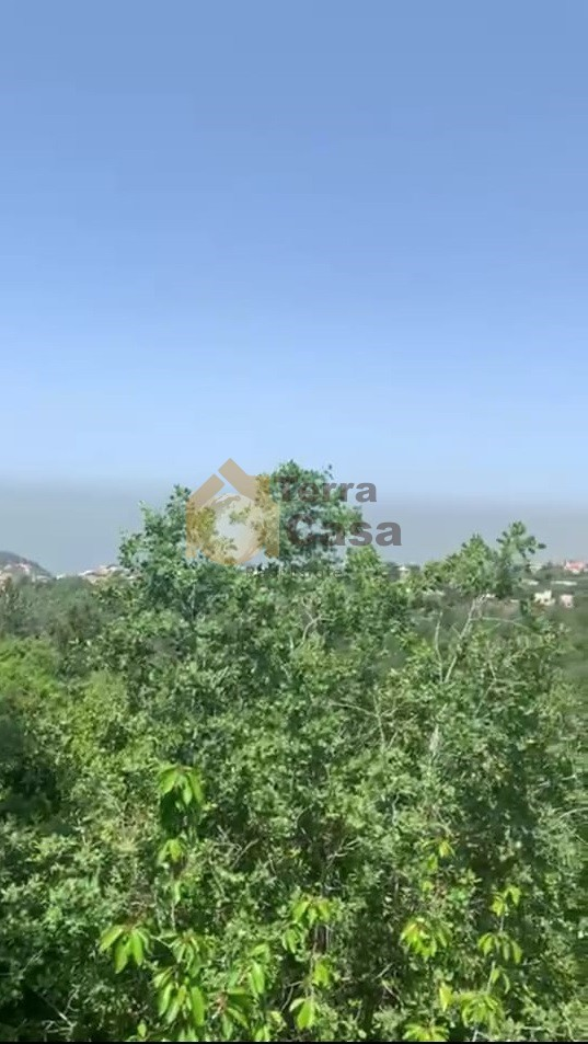 Land for sale in Aazra -Zeytoun locate in calm area  Sea view